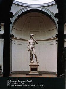 Libro Michelangelo. David. Ediz. inglese Laura Ciuccetti 1