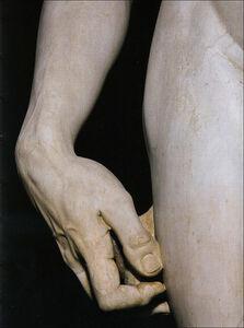 Libro Michelangelo. David. Ediz. inglese Laura Ciuccetti 2