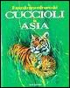 Foto Cover di Il mondo straordinario dei cuccioli in Asia, Libro di Andrea Bempensante,Ira Rubini, edito da Dami Editore