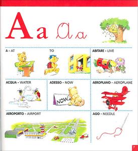 Libro Vocabolario illustrato di inglese Alessandra Galli , Tony Wolf 3
