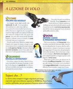 Foto Cover di Il grande libro del come dove quando?, Libro di Michele Lauro, edito da Giunti Junior 2