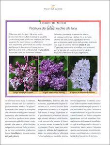 Libro Il maestro giardiniere. A scuola di giardinaggio Carlo Pagani , Mimma Pallavicini 2