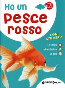 Mercatinidinataletorino.it Ho un pesce rosso. Le varietà, l'alimentazione, le cure. Con adesivi Image