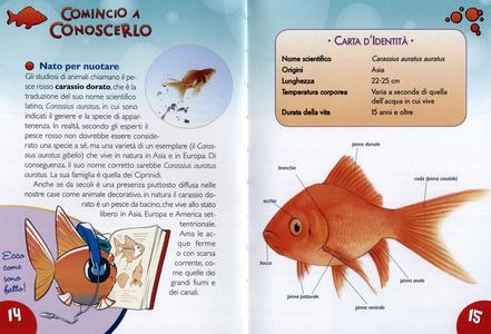 Libro Ho un pesce rosso. Le varietà, l'alimentazione, le cure. Con adesivi Bruno Tenerezza 2