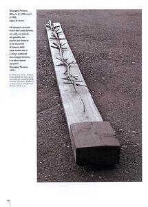 Foto Cover di Arte Povera, Libro di Germano Celant, edito da Giunti Editore 2