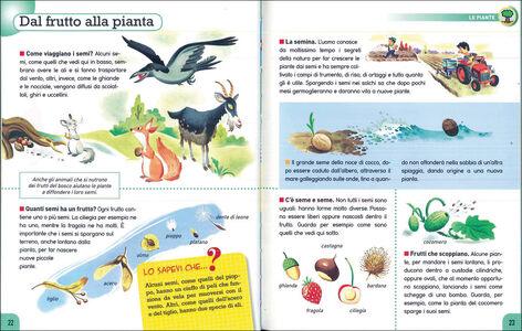 Foto Cover di Vita. Con adesivi, Libro di AA.VV edito da Dami Editore 1