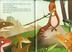 Libro L' orchestrosauro Barbara Pumhösel 1