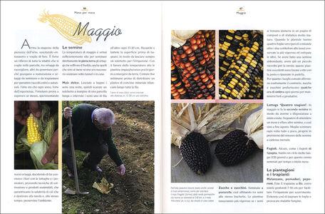 Libro Nell'orto con il maestro giardiniere Carlo Pagani , Mimma Pallavicini 1