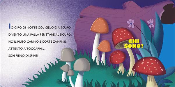 Libro Gli animali del bosco Roberto Morgese , Barbara Bongini 1