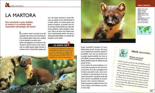Foto Cover di Nel mondo degli animali, Libro di Fulco Pratesi,Isabella Pratesi, edito da Giunti Junior 1