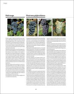 Libro Atlante geologico dei vini d'Italia  2