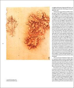 Libro Leonardo da Vinci. L'uomo universale. Catalogo della mostra (Venezia, 1 settembre-1 dicembre 2013)  2