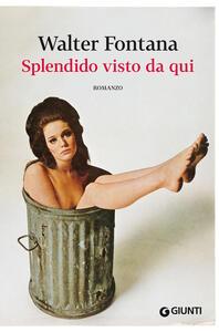 Splendido visto da qui - Walter Fontana - ebook