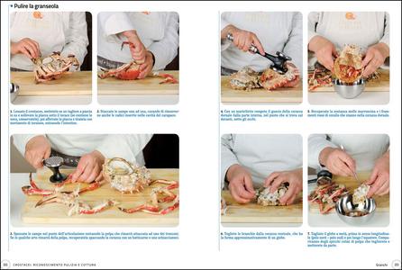 Libro Frutti di mare e crostacei  2