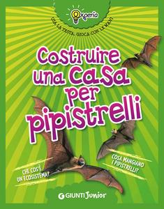 Libro Costruire una casa per pipistrelli Beniamino Sidoti