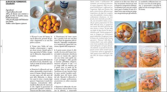 Foto Cover di Fermentati & germinati. Preparare e conservare alimenti ricchi di vita, Libro di Manuela Vanni, edito da Giunti Editore 3