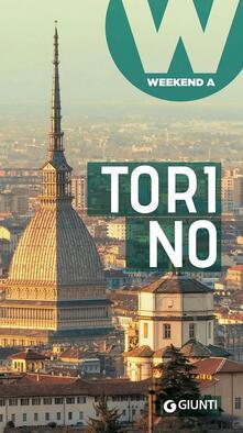 Antondemarirreguera.es Torino Image