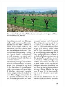 Libro Passione vino. Sceglierlo, servirlo e degustarlo  3
