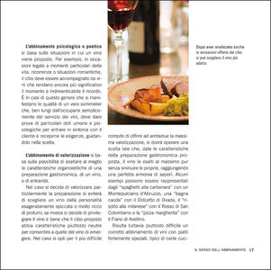 Libro Manuale degli abbinamenti. Armonie del gusto, ideali contrasti fra vino e cibo Giuseppe Vaccarini 3