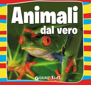Libro Animali dal vero Emanuela Busà