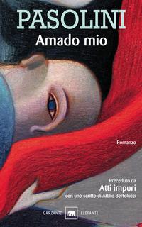 copertina del libro Amado mio di P. P. Pasolini, Garzanti