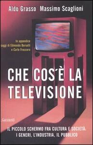 Che cos'è la televisione. Il piccolo schermo fra cultura e società: i generi, l'industria, il pubblico - Aldo Grasso,Massimo Scaglioni - copertina