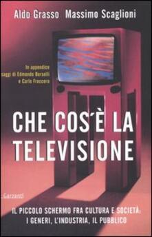 Camfeed.it Che cos'è la televisione. Il piccolo schermo fra cultura e società: i generi, l'industria, il pubblico Image