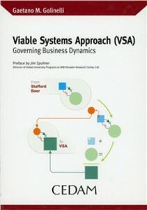 Viable Systems Approach (VSA). Governing business dynamics