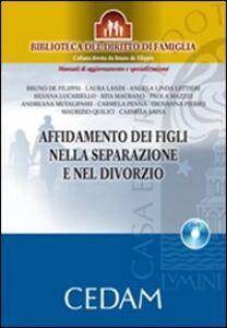 Libro Affidamento dei figli nella separazione e nel divorzio. Con DVD-ROM