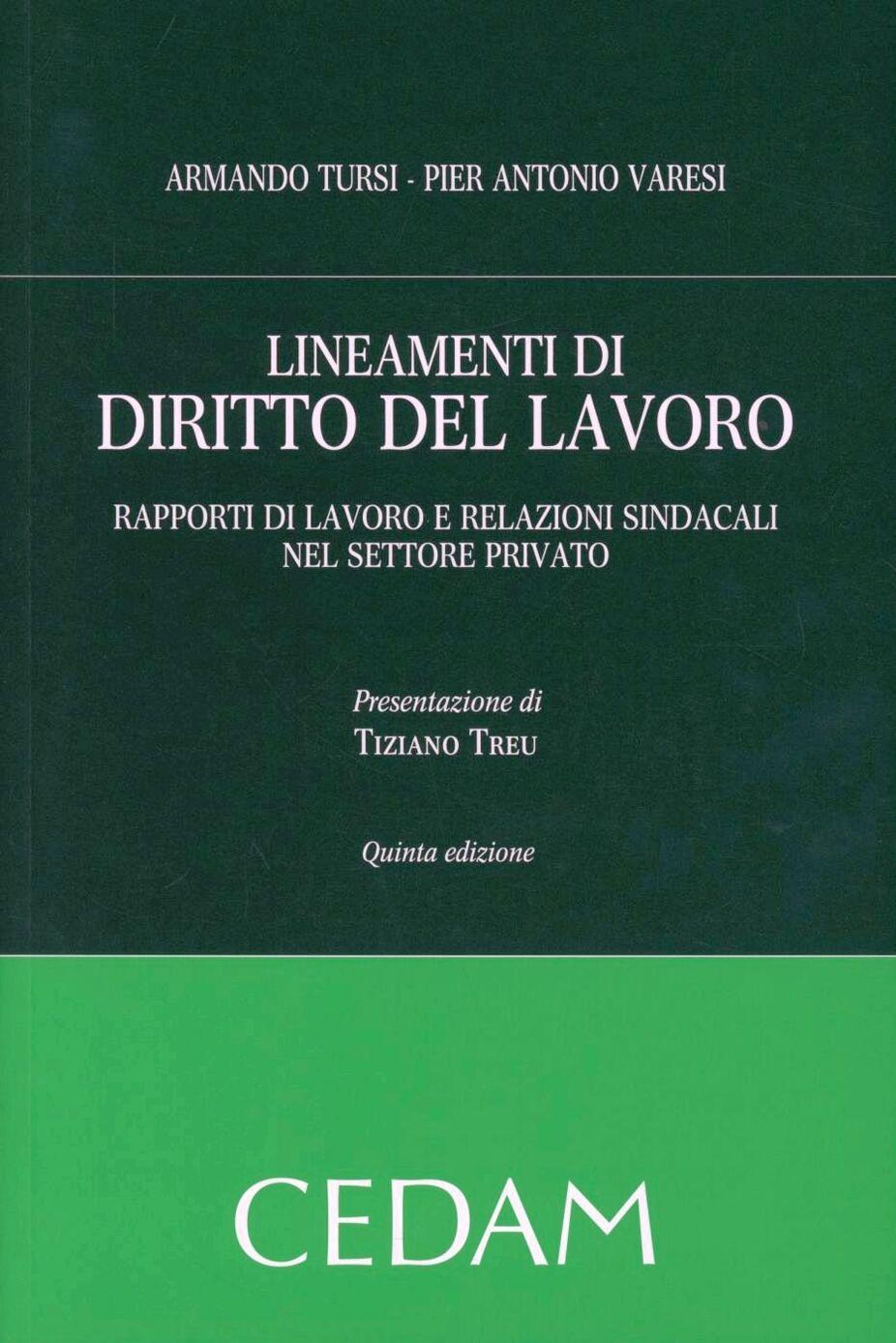 Lineamenti di diritto del lavoro. Rapporti di lavoro e relazioni sindacali nel settore privato