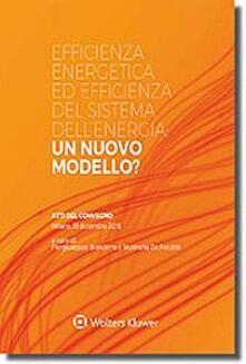 Daddyswing.es Efficienza energetica ed efficienza del sistema dell'energia: un nuovo modello? Image