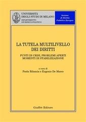 La tutela multilivello dei diritti. Punti di crisi, problemi aperti, momenti di stabilizzazione. Atti del Convegno (Milano, 4 aprile 2003)