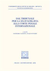 Libro Dal Tribunale per la ex-Iugoslavia alla Corte penale internazionale
