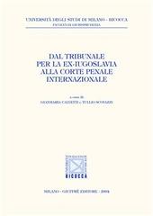 Dal Tribunale per la ex-Iugoslavia alla Corte penale internazionale