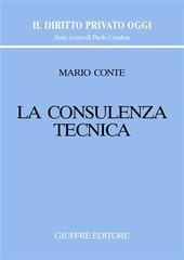 La consulenza tecnica