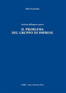 Foto Cover di Il problema del gruppo di imprese. Societas delinquere potest, Libro di Elisa Scaroina, edito da Giuffrè