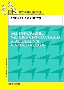 Libro Gli intangibili nei principi contabili statunitensi e negli IAS/IFRS Andrea Amaduzzi