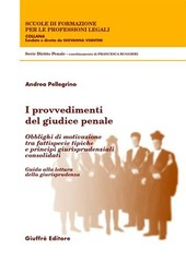 I provvedimenti del giudice penale. Obblighi di motivazione tra fattispecie tipiche e principi giurisprudenziali consolidati. Guida alla lettura della giurisprudenza