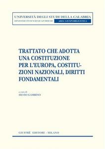 Libro Trattato che adotta una costituzione per l'Europa, costituzioni nazionali, diritti fondamentali