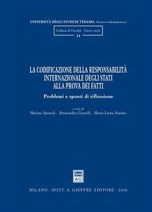 Foto Cover di La codificazione della responsabilità internazionale degli Stati alla prova dei fatti. Problemi e spunti di riflessione, Libro di  edito da Giuffrè