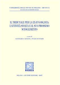 Libro Il Tribunale per la ex-Jugoslavia: l'attività svolta e il suo prossimo scioglimento