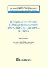Le aggregazioni bancarie e l'evoluzione del rapporto banca-impresa nella provincia di Novara
