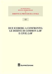 Libro Due iceberg a confronto. Le derive del common law e civil law. Atti del 20° Seminario