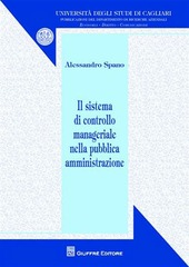Il sistema di controllo manageriale nella pubblica amministrazione