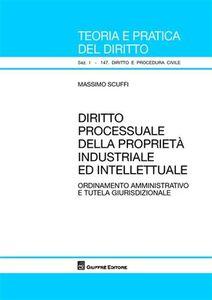 Libro Diritto processuale della proprietà industriale ed intellettuale. Ordinamento amministrativo e tutela giurisdizionale Massimo Scuffi