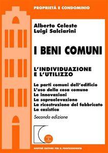 Libro I beni comuni. L'individualizzazione e l'utilizzo Alberto Celeste , Luigi Salciarini