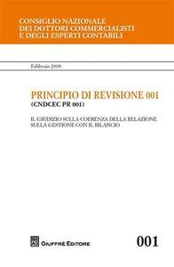 Libro Principio di revisione. Documento 001. Il giudizio sulla coerenza della relazione sulla gestione con il bilancio