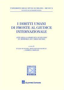 Foto Cover di I diritti umani di fronte al giudice internazionale. Atti della Giornata di studio in memoria di Carlo Russo, Libro di  edito da Giuffrè