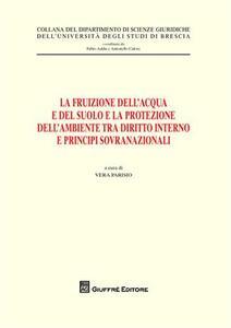 La fruizione dell'acqua e del suolo e la protezione dell'ambiente tra diritto interno e principi sovranazionali