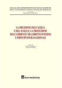 Foto Cover di La fruizione dell'acqua e del suolo e la protezione dell'ambiente tra diritto interno e principi sovranazionali, Libro di  edito da Giuffrè